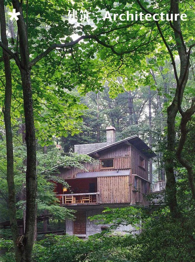 16个日本最佳现代住宅,小而美的空间造就了温暖的家。_1