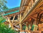 美丽的竹子建筑,好看,好用,好玩