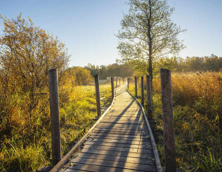 013-nattours-accessible-recreational-path-by-studio-puisto-architects