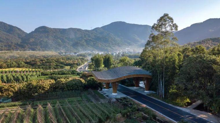 理事作品|北回归线上的绿翡翠:广州·南平静修小镇