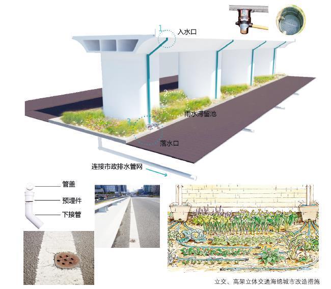 24种海绵城市设计措施全图解!_19