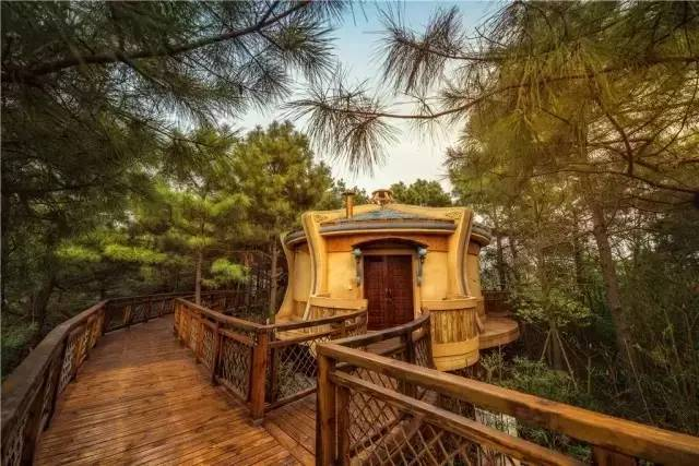 中国最受欢迎的35家顶级野奢酒店_105