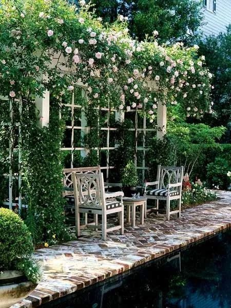 世界那么大,我却只想要个小院花开满园,自在从容……_17