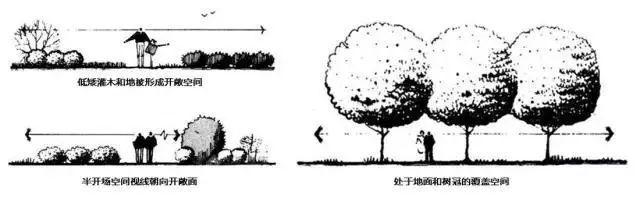 """这些必备的""""植物造景"""",不止是种树种花_9"""