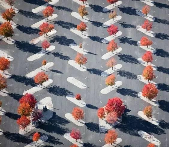 停车位,也被设计师们玩出了各种花样~