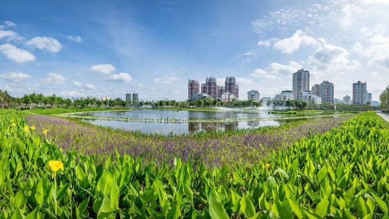 全面推进生态治水,景观设计师能做些什么?_25