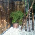 佛山泓江100X200庭院竹篱笆烟色表面上漆