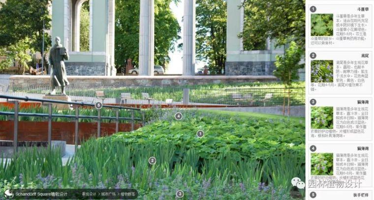 104组精彩植物配置案例(实景效果+植物品种)_89