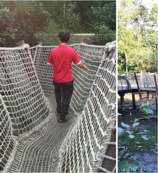 案例分享|新加坡双溪布洛湿地公园景观设计_7