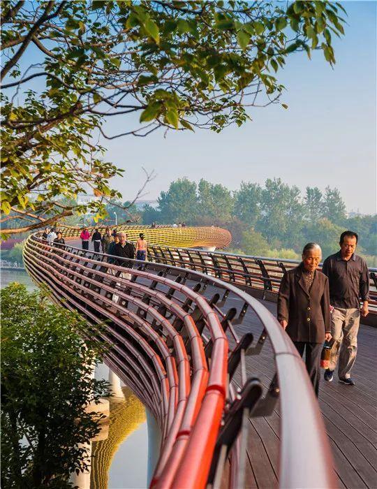 中国建筑设计奖公布,八大景观项目获得中国建筑界最高荣誉!_25