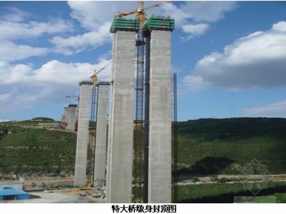 [陕西]特大桥工程超高薄壁空心墩外翻内爬模施工技术