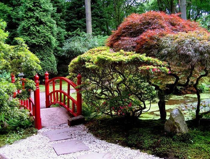 做自己庭院的设计师,造园或许没有想象的那么难!_16