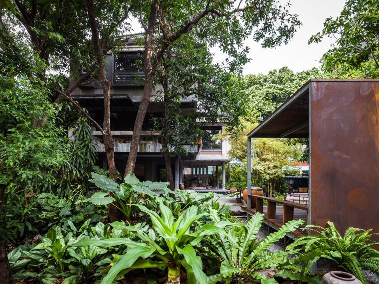 隐匿于树林中的芒果树别墅