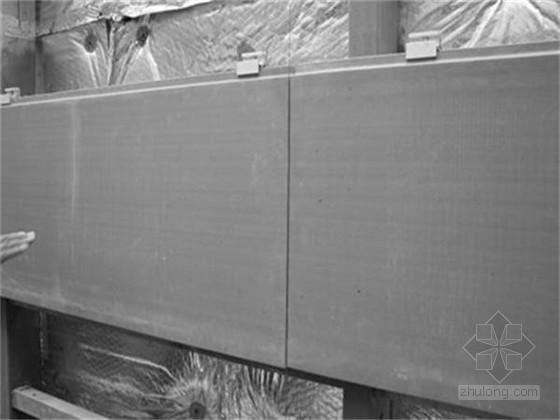 陶土板幕墙施工工艺(13页 附图较多)