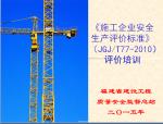 施工企业安全生产标准化评价标准(200余页)