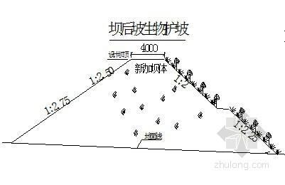 [宁夏]某小流域淤地坝初步设计报告