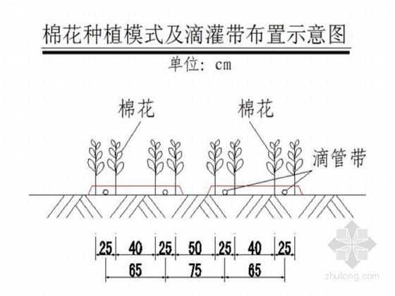 [新疆]2.5万亩高效节水建设项目初步设计报告(滴灌)