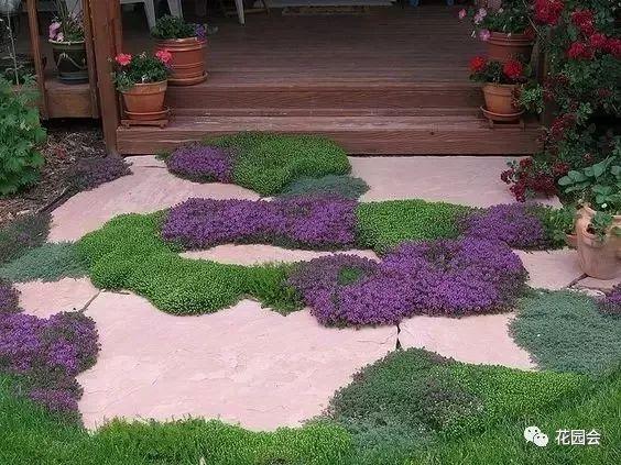花草与石板的关系•花园小径_8