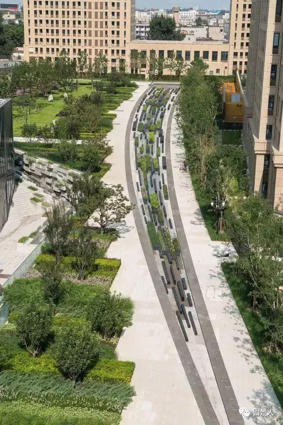 城市干道植物配置,实用干货不得不看!_36
