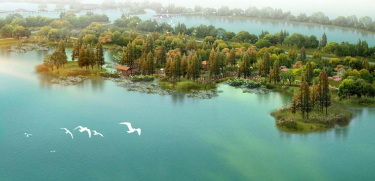 水上公园鸟瞰