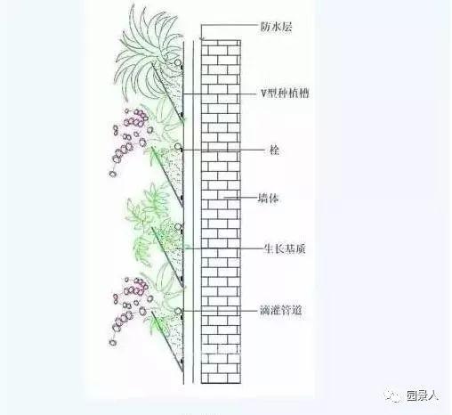 垂直绿化·会呼吸的墙壁_27