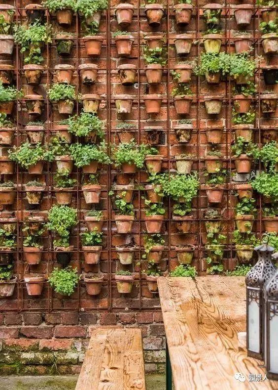 垂直绿化·会呼吸的墙壁_19