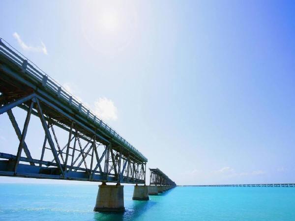 桥梁设计与优化仿生方法的运用