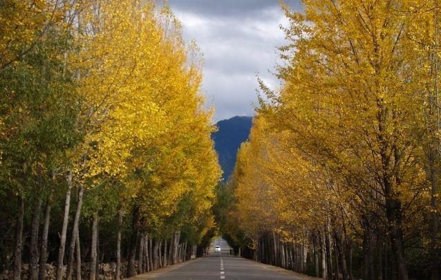 论公路沿线的景观规划与实施_1