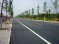 体育场周边市政道路改造工程施工方案(102页)