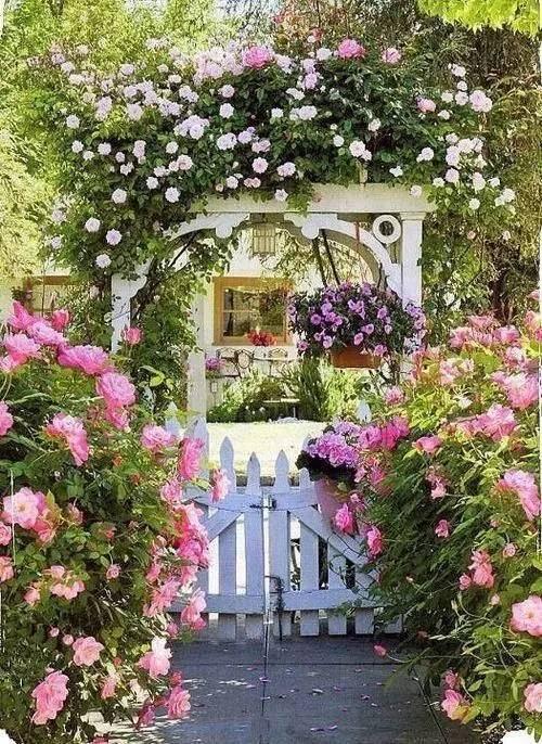 50款·漂亮的庭院入口_31