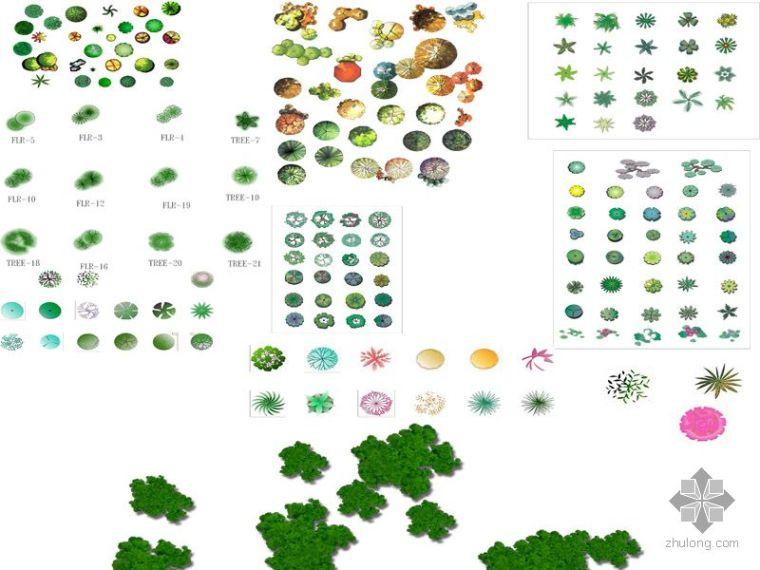 photoshop园林植物平面素材