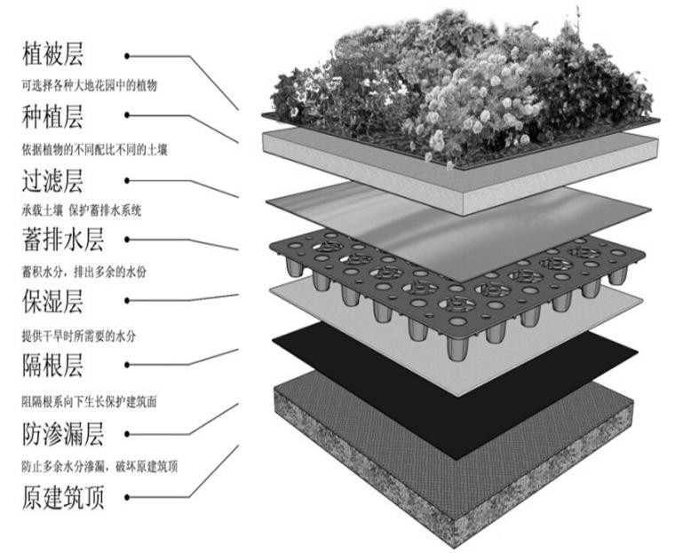 提高车库顶绿化乔木栽植成活率