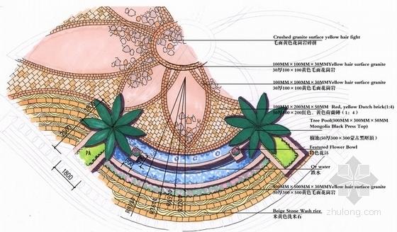 局部平面图