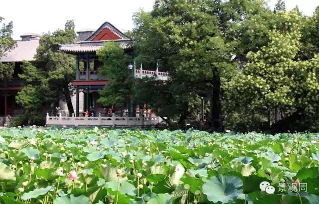 中国最美的十个园林,全都去过的一定是土豪!!_36