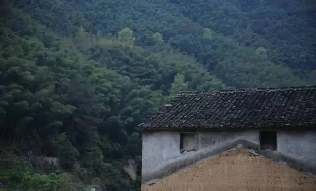 中国最美五十家民宿院子_66