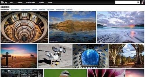99%的景观设计师都在这48个无版权图片网站找图!_28