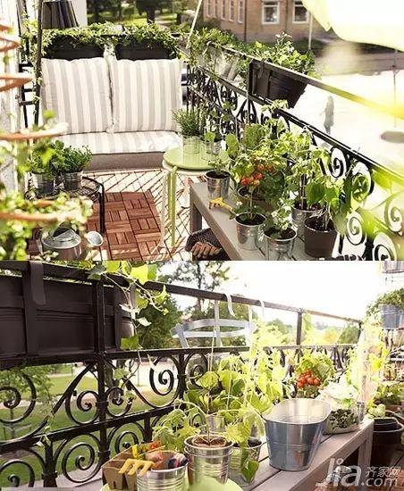 """158款·精致阳台改造案例,小阳台也有""""花园梦""""!_136"""