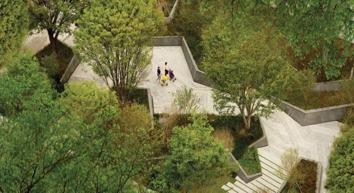 树池的配置方法和设计形式_39