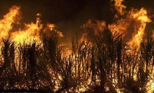 图解火灾自动报警系统的五大组成部分