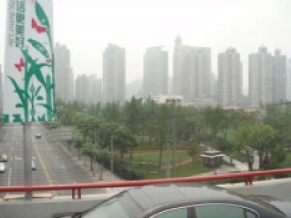 高架桥绿化景观研究/济南市北园高架桥绿化景观分析
