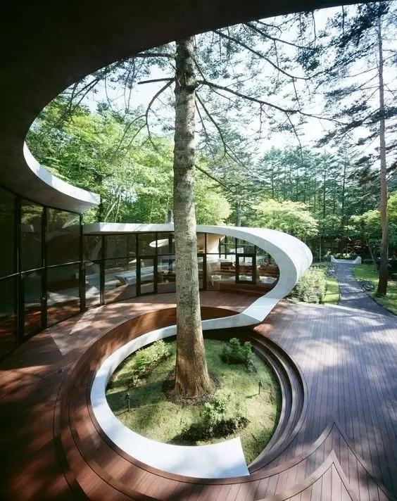 景观做得好丨给树让让路-640.webp (53).jpg