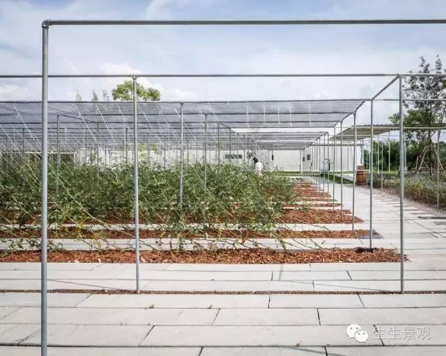 农业景观的意义_84