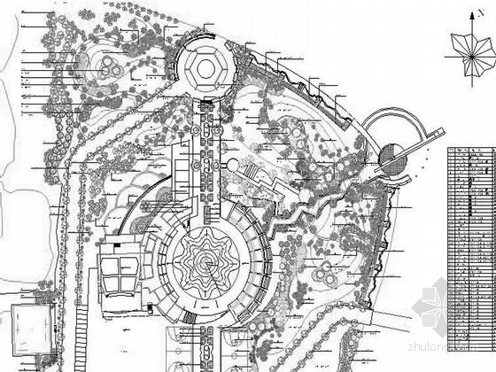某地文化广场种植设计施工图