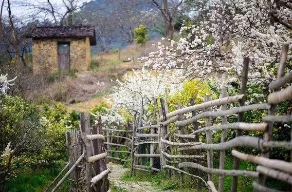 乡村庭院,天然,美如画!