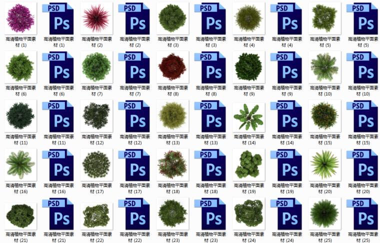 高清平面植物素材150棵(psd格式)