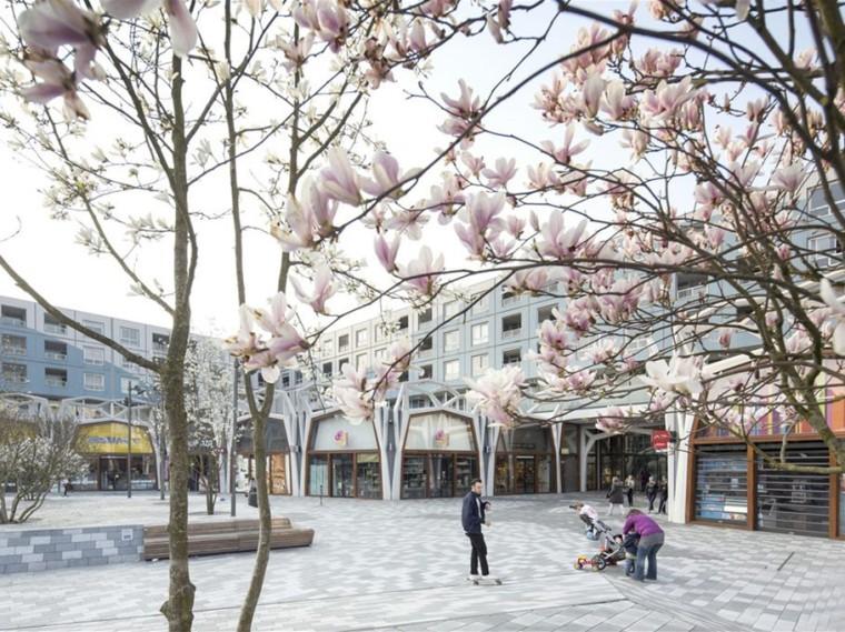 荷兰以怒放为主题的公共空间