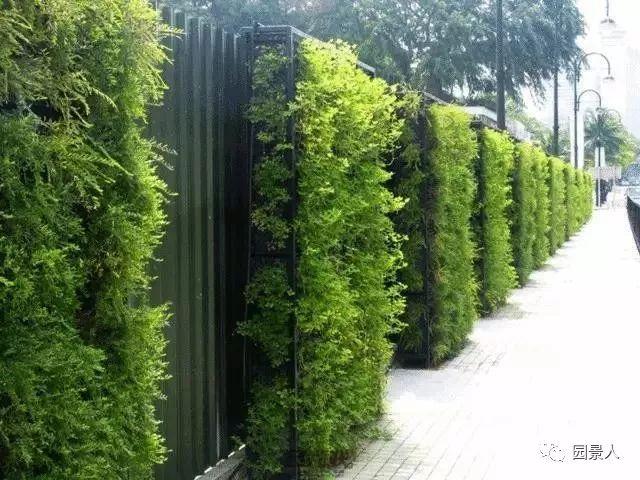 垂直绿化·会呼吸的墙壁_11