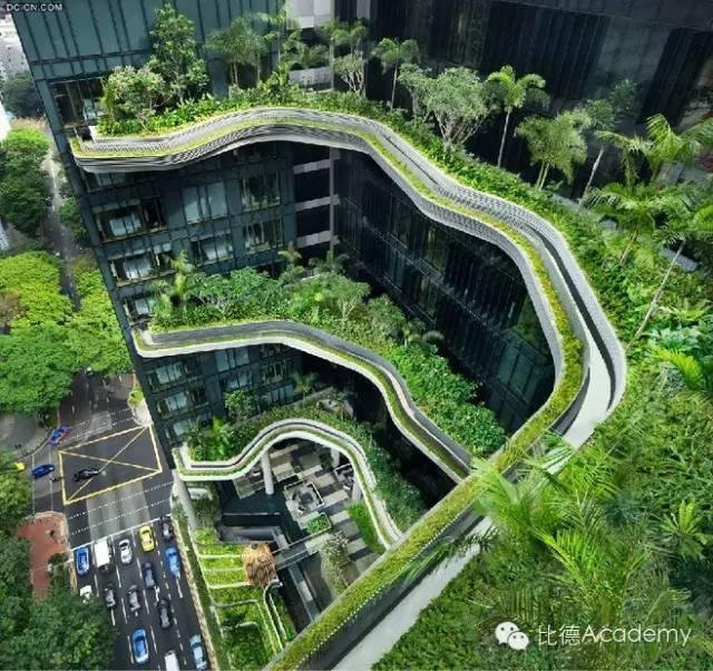 为什么全世界都向新加坡学习垂直绿化