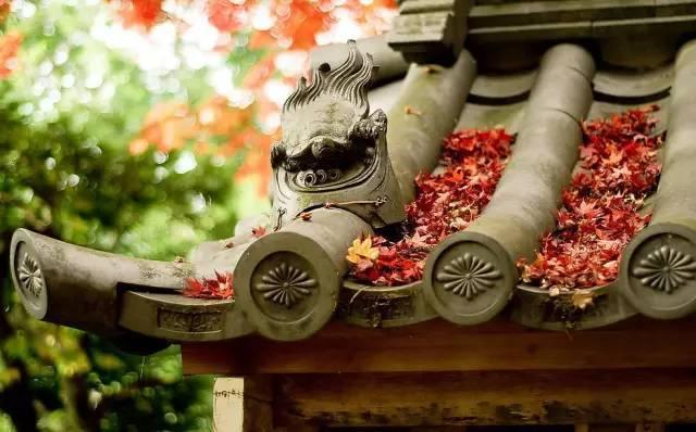 聆听岁月回响 中国古典园林之美_5