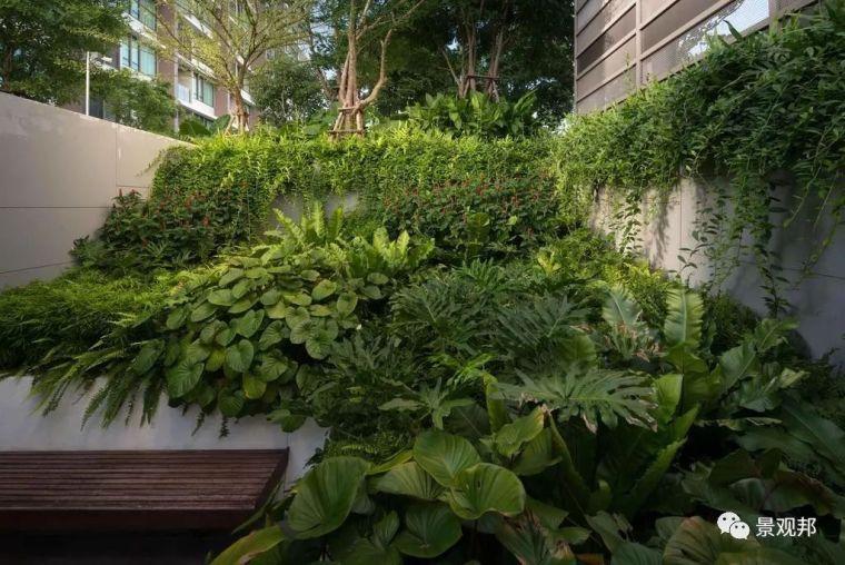 泰国24个经典住宅设计,你喜欢哪一个?_61